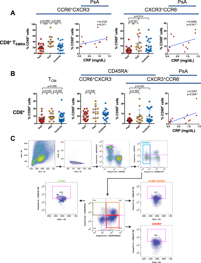 Increased frequency of activated CD8 + T cell effectors in