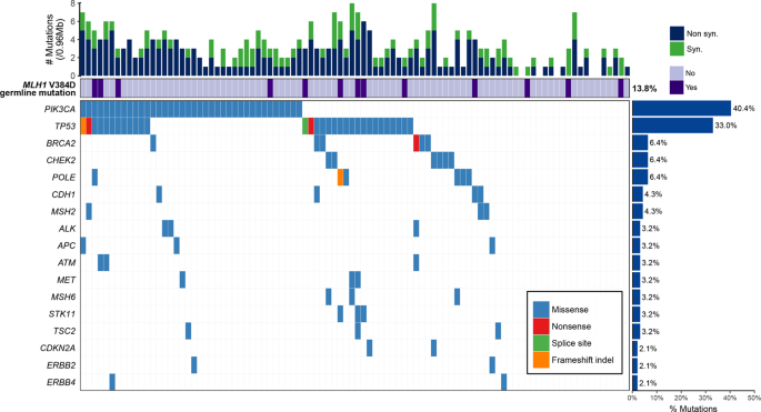High prevalence of the MLH1 V384D germline mutation in patients with H