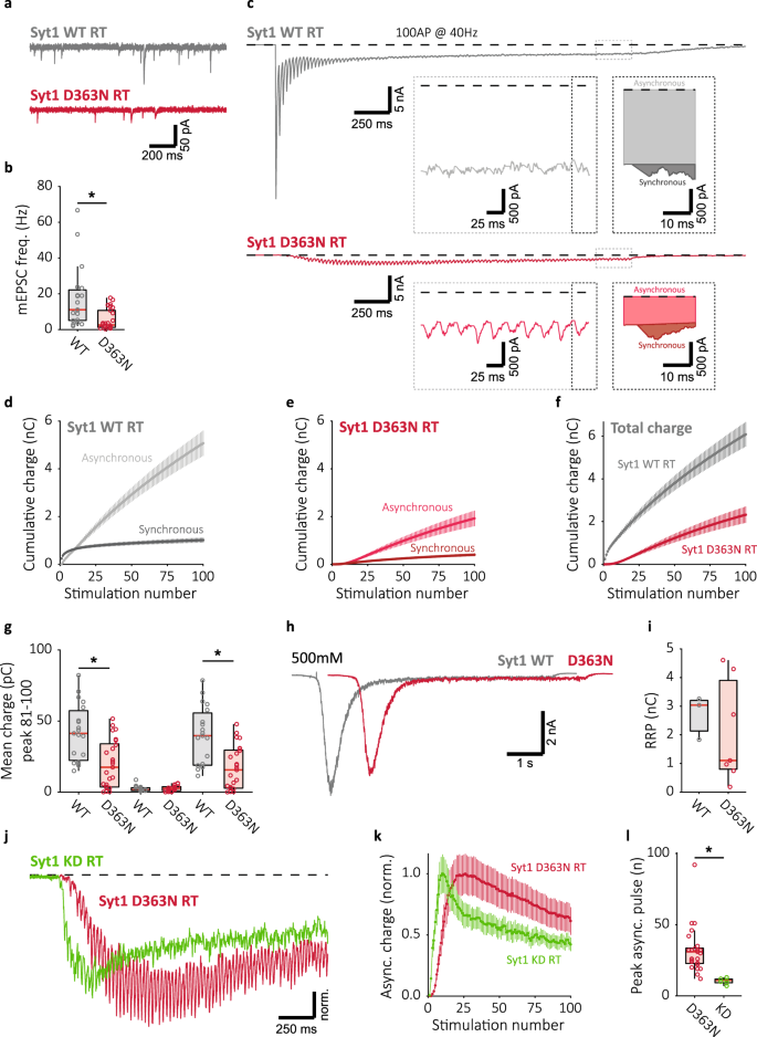 Synaptotagmin-1 enables frequency coding by suppressing asynchronous