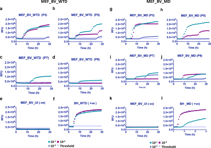 Gene-edited murine cell lines for propagation of chronic wasting