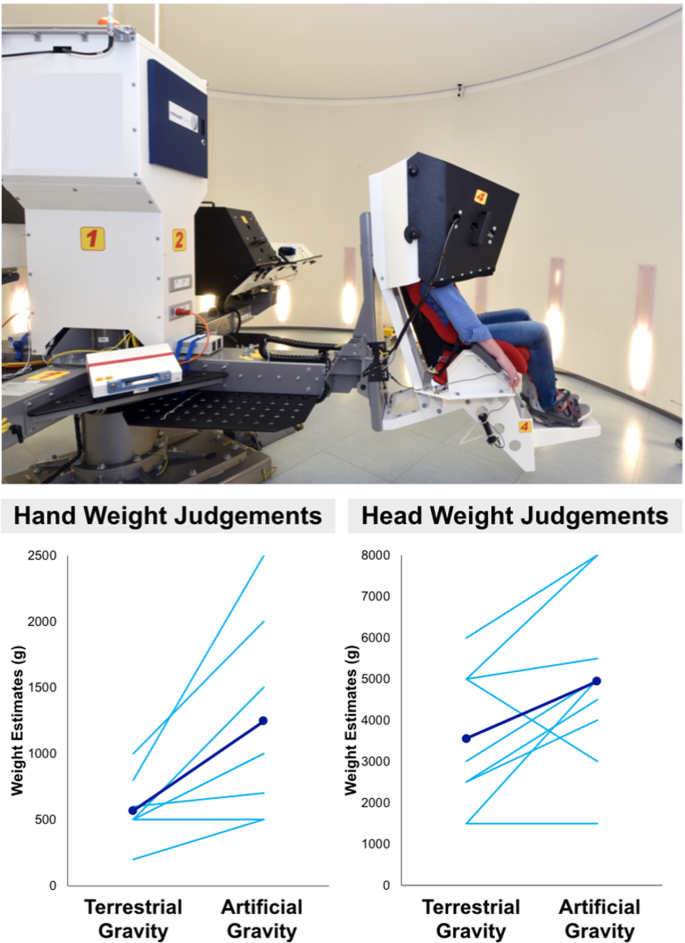 A Gravitational Contribution To Perceived Body Weight Scientific Reports