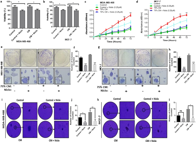 Niclosamide Reverses Adipocyte Induced Epithelial Mesenchymal Transition In Breast Cancer Cells Via Suppression Of The Interleukin 6 Stat3 Signalling Axis Scientific Reports