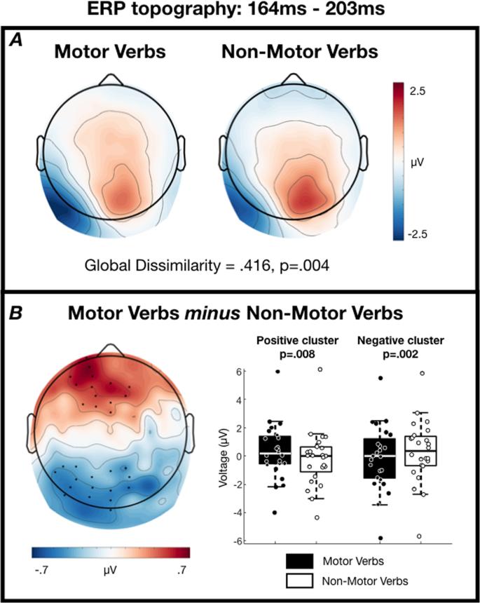 Dissociable electrophysiological correlates of semantic access of