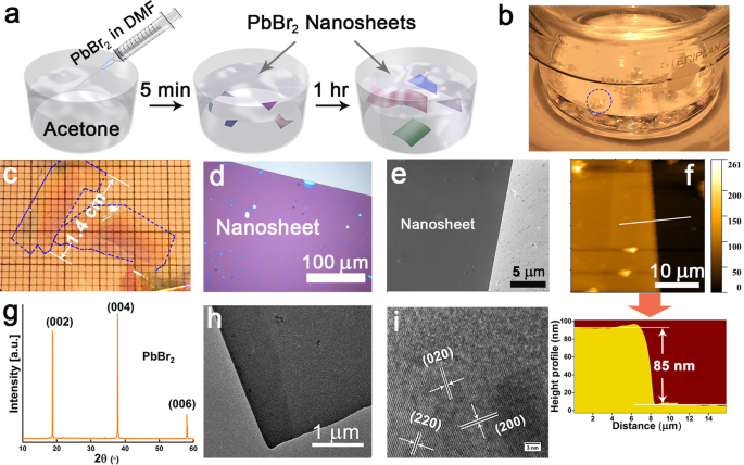 Synthesis of centimeter-size free-standing perovskite nanosheets from