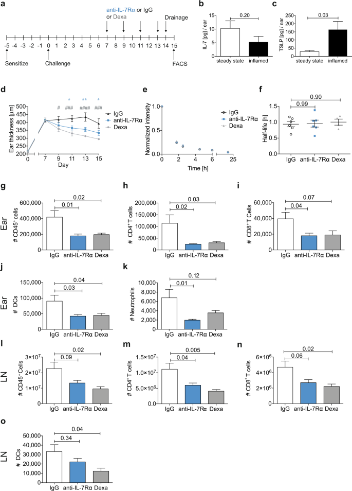 Opposing roles of endothelial and leukocyte-expressed IL-7Rα
