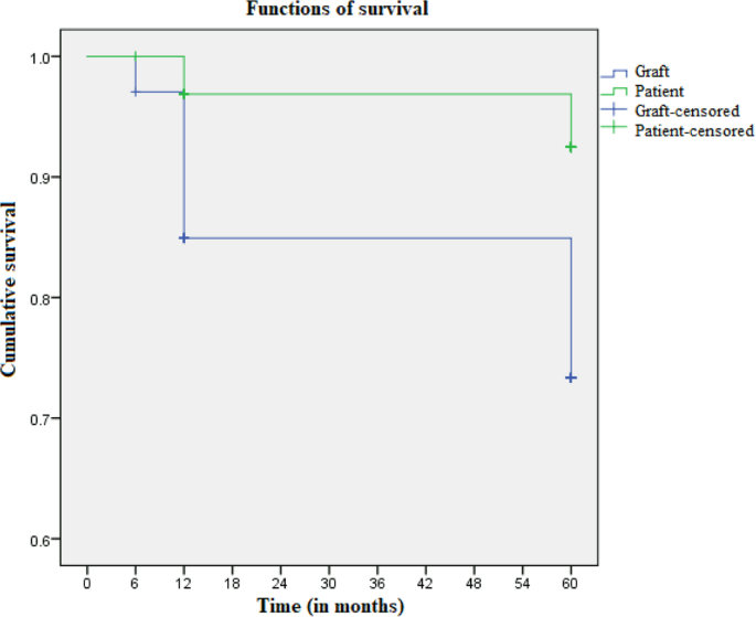Outcome and Prognosis of Patients With Lupus Nephritis Submitted to Re