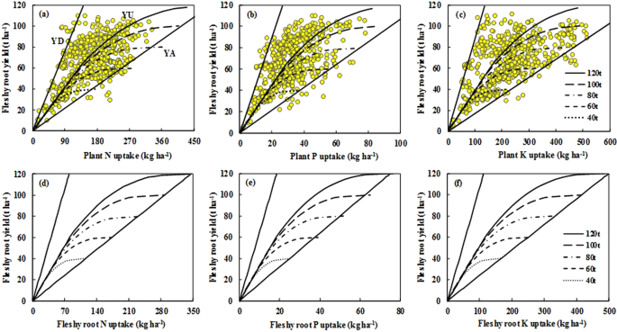 Estimating nutrient uptake requirements for radish in China based on