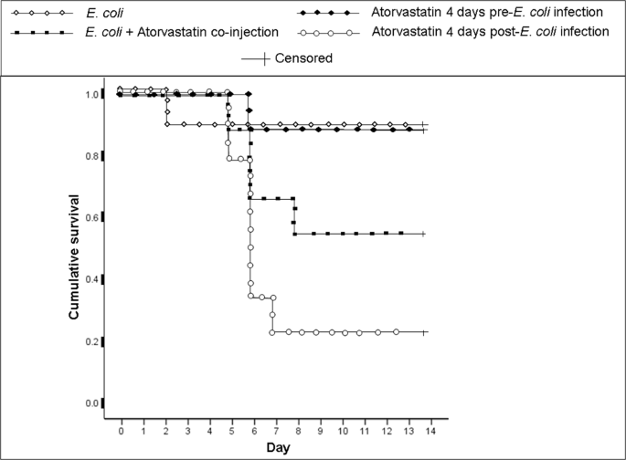 Atorvastatin increases the production of proinflammatory cytokines and