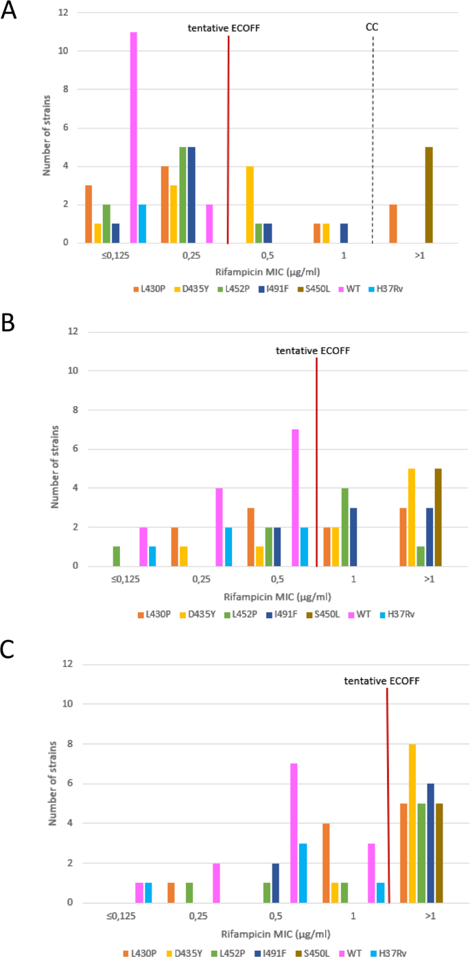 Variable ability of rapid tests to detect Mycobacterium tuberculosis r