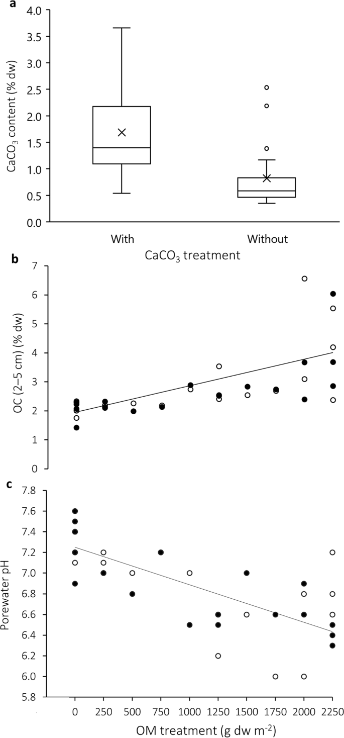 Calcium carbonate alters the functional response of coastal sediments