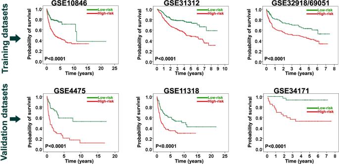 Development of a Reproducible Prognostic Gene Signature to Predict the