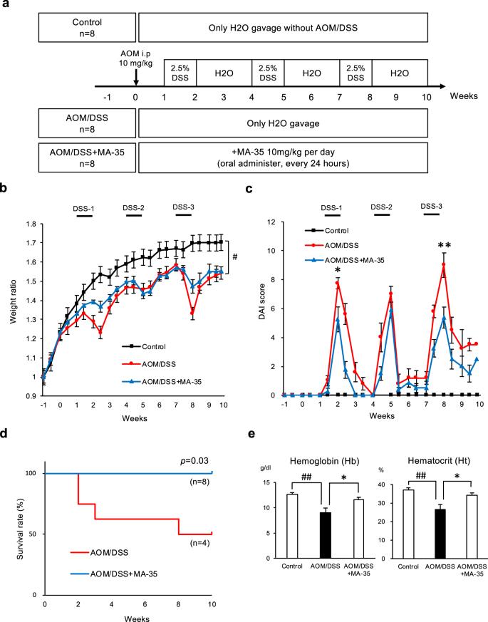 The indole compound MA-35 attenuates tumorigenesis in an