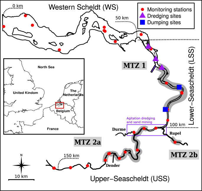 Critical transitions in suspended sediment dynamics in a temperate mes