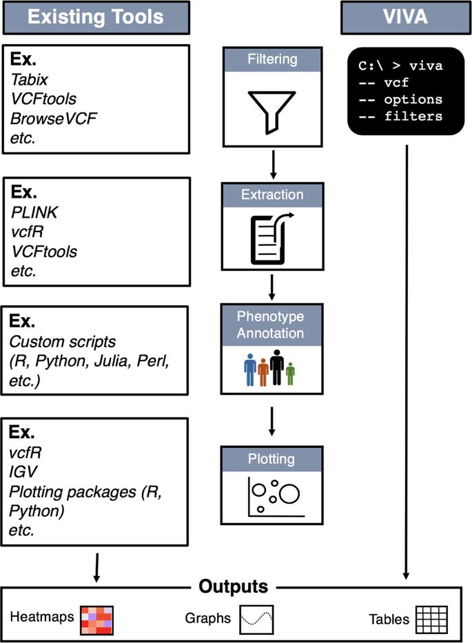 VIVA (VIsualization of VAriants): A VCF File Visualization Tool