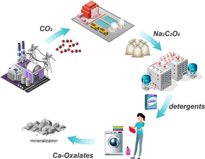 A New Route for Indirect Mineralization of Carbon Dioxide–Sodium