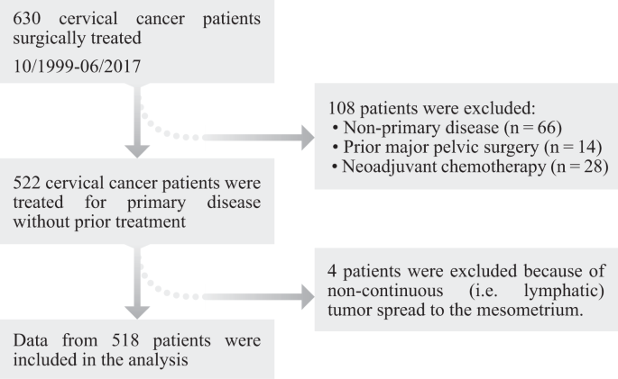 Roadmap to Local Tumour Growth: Insights from Cervical