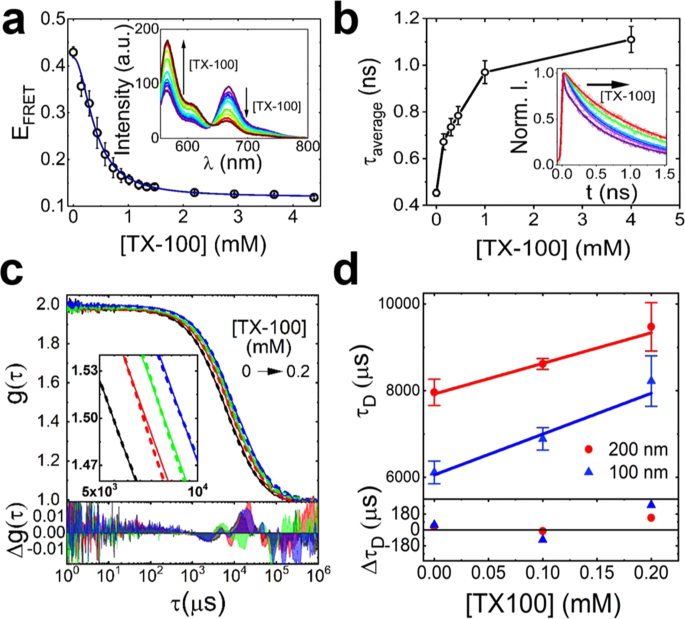 Unveiling the multi-step solubilization mechanism of sub-micron size v