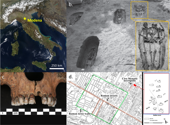 Enamel peptides reveal the sex of the Late Antique 'Lovers of Mo