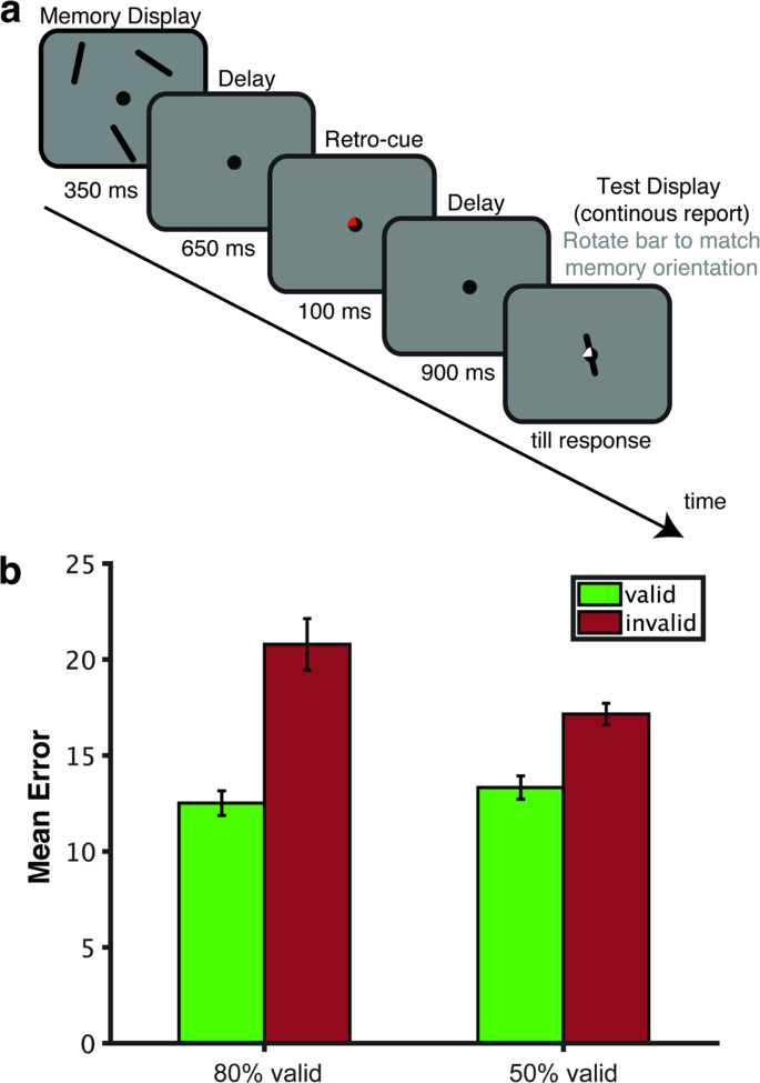 EEG dynamics reveal a dissociation between storage and selective atten