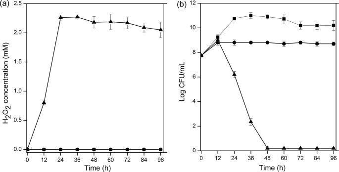 New crosstalk between probiotics Lactobacillus plantarum and Bacillus