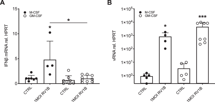 Rhinovirus-induced IFNβ expression is NFκB-dependent and reg