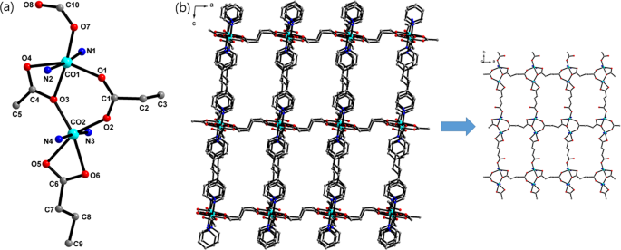 Cobalt(II)-coordination polymers containing glutarates and bipyridyl l