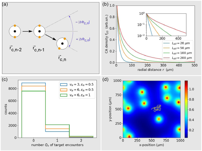 On the efficiency of chemotactic pursuit - Comparing blind search with