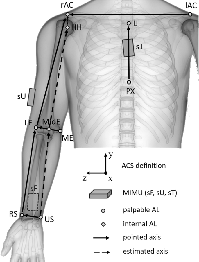 Upper limb joint kinematics using wearable magnetic and ...