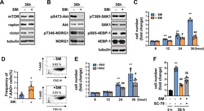Simulated microgravity inhibits C2C12 myogenesis via phospholipase D2-