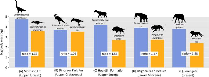 Competition structured a Late Cretaceous megaherbivorous dinosaur asse