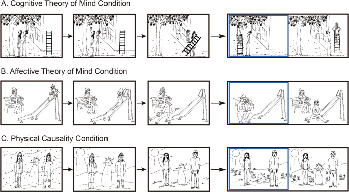 Neural correlates of theory of mind in typically-developing youth