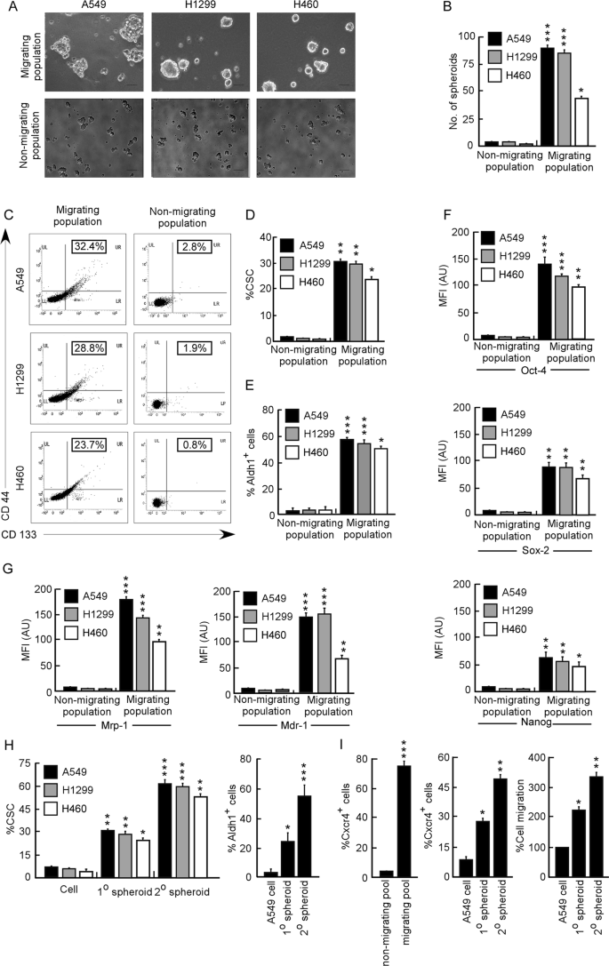 Aspirin enhances cisplatin sensitivity of resistant non-small cell lun