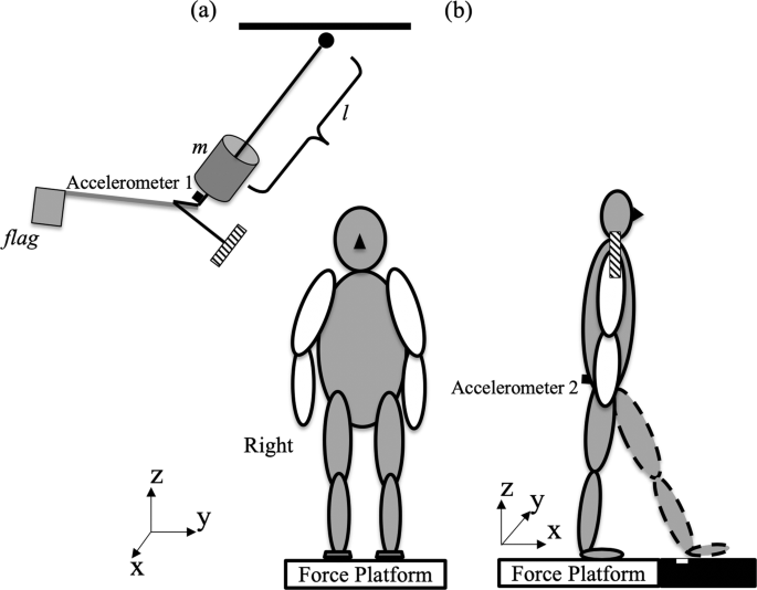 Characteristics of medial-lateral postural control while exposed to th