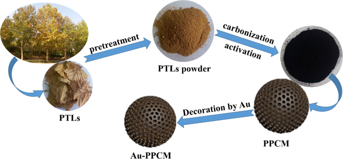 3D hierarchically gold-nanoparticle-decorated porous carbon for high-p
