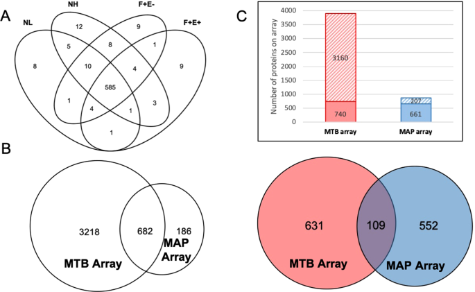 Identification of Sero-Diagnostic Antigens for the Early Diagnosis of