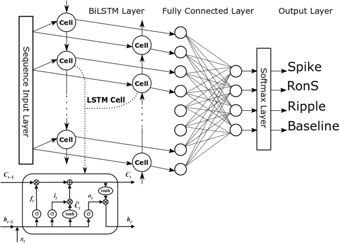 A Long Short Term Memory Neural Network For The Detection Of Epileptiform Spikes And High Frequency Oscillations Scientific Reports