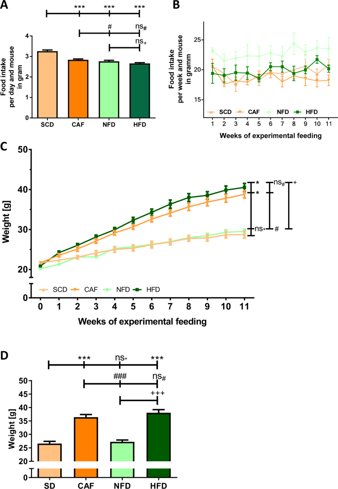 high fat diet insulin resistance mice article