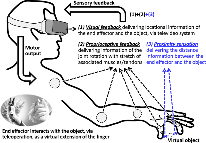 Electrically-Evoked Proximity Sensation Can Enhance Fine Finger Contro