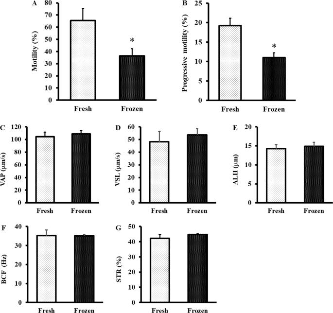 Establishment of sperm cryopreservation and in vitro fertilisation pro