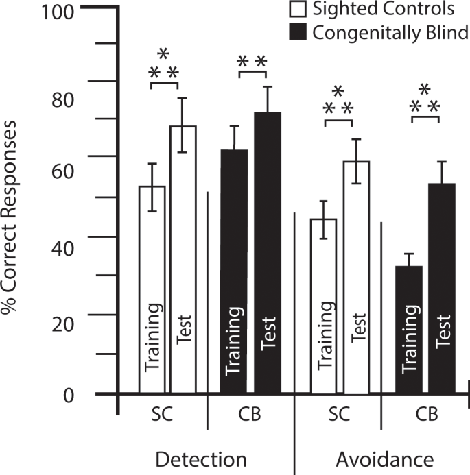 Neural Networks Mediating Perceptual Learning in Congenital Blindness