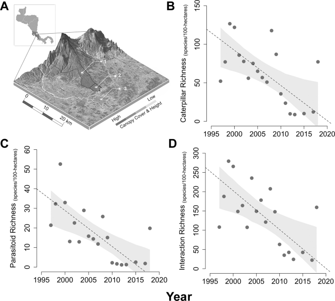 Loss of dominant caterpillar genera in a protected tropical forest