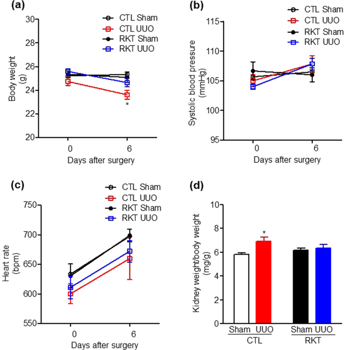 Effects Of Rikkunshito Treatment On Renal Fibrosis Inflammation And Body Weight Reduction In A Unilateral Ureteral Obstruction Model In Mice Scientific Reports