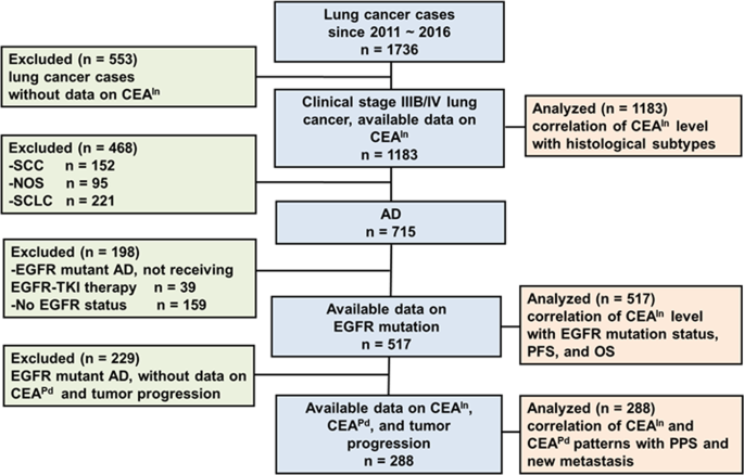 Association Of Divergent Carcinoembryonic Antigen Patterns And Lung Cancer Progression Scientific Reports