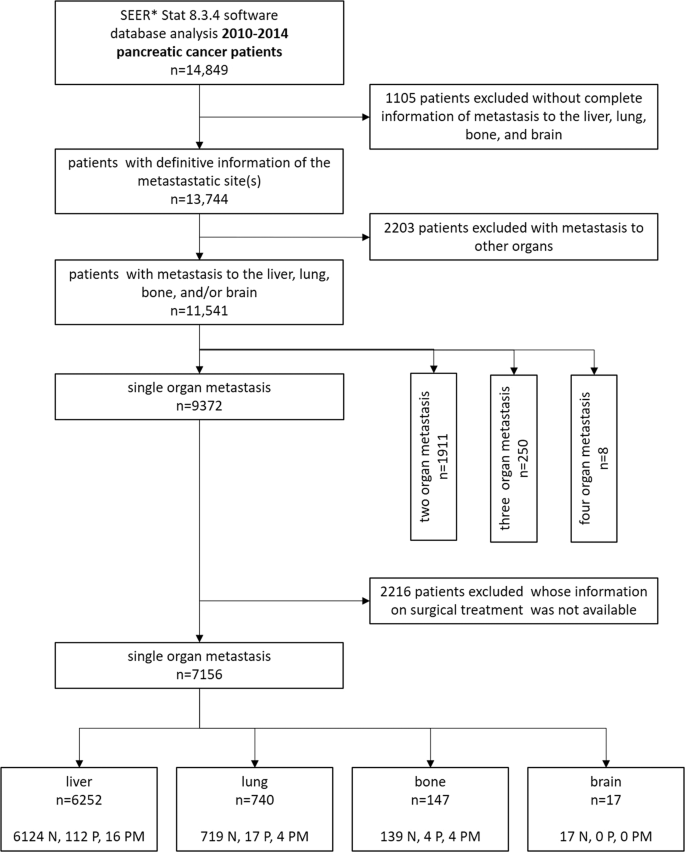 Surgery For Synchronous And Metachronous Single Organ Metastasis Of Pancreatic Cancer A Seer Database Analysis And Systematic Literature Review Scientific Reports