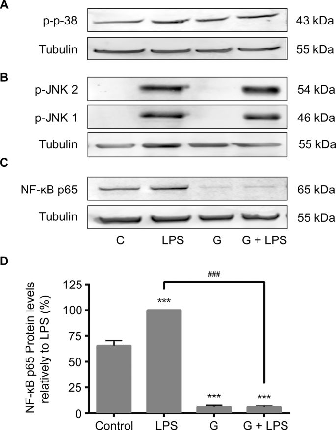 metode pentru infectarea teniei bovinelor another term for intraductal papilloma