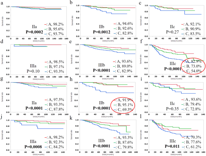 Combination Of Preoperative Tumour Markers And Lymphovascular Invasion With Tnm Staging As A Cost And Labour Efficient Subtyping Of Colorectal Cancer Scientific Reports