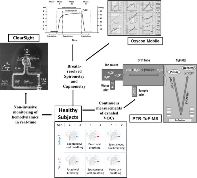 Exhaled Breath Compositions Under Varying Respiratory Rhythms Reflects Ventilatory Variations Translating Breathomics Towards Respiratory Medicine Scientific Reports