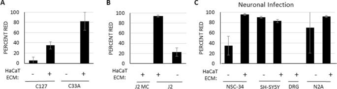 incubation du papillomavirus gel exapsan din papilom recenzii preț