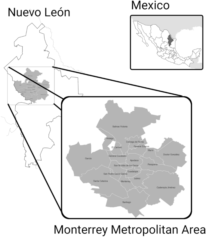 Eight Years Of Homicide Evolution In Monterrey Mexico A Network Approach Scientific Reports