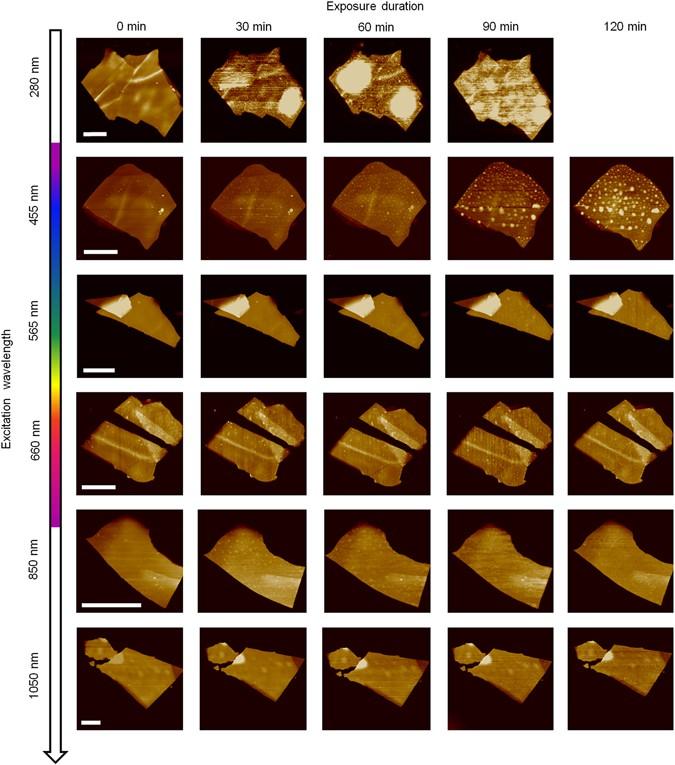 Degradation of black phosphorus is contingent on UV–blue light